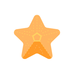 travel_starfish