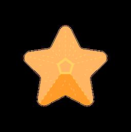 travel_starfish