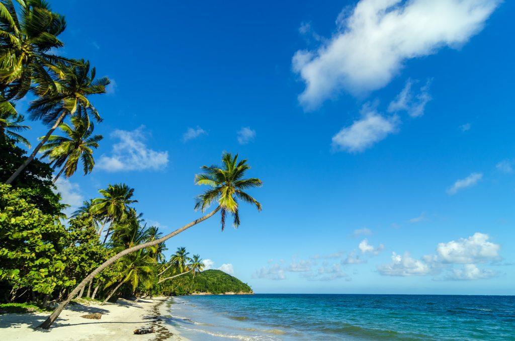 Beautiful Deserted Beach
